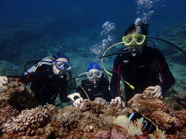 Discover Scuba Dives at Yonehara