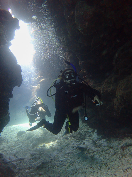 Summer Fun Dives ♪♪