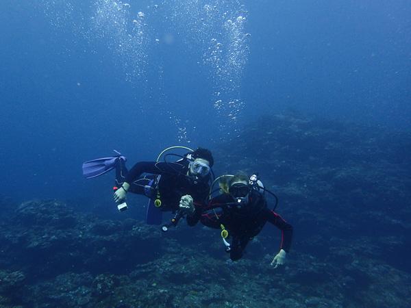 Discover Scuba Dives with Manta Ray