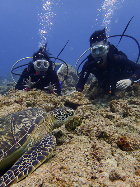 Relaxed discover scuba dives in Ishigaki