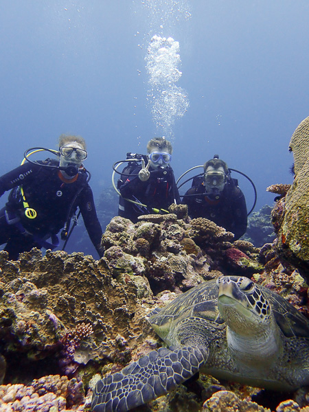 Great day for Discover Scuba Dives
