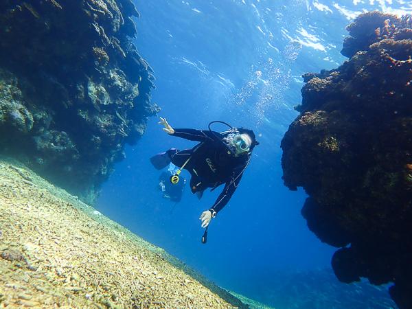 Birthday week dives